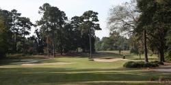 Swamp Fox Golf