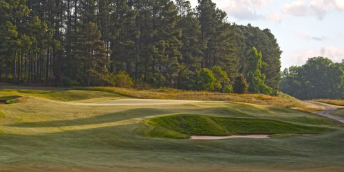 Brown Golf Packages